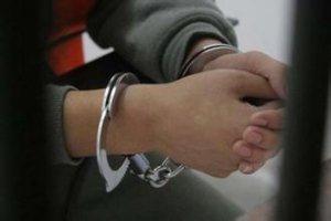 """河南检方回应""""大学生掏鸟案""""被告父亲自首:依法在初查"""